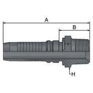 BSP 91
